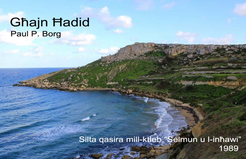 Għajn Ħadid
