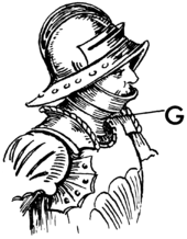 gurgiera