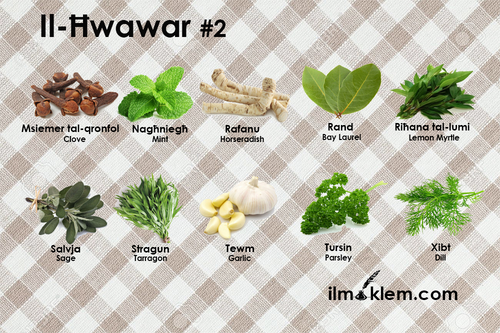 Il-Ħwawar 2