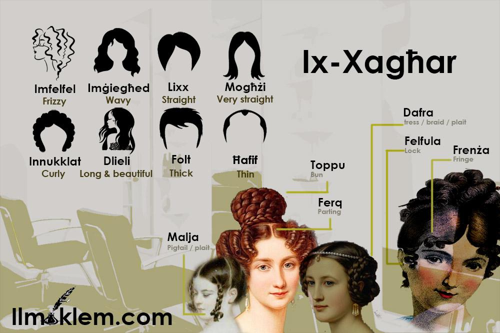 Ix-Xagħar