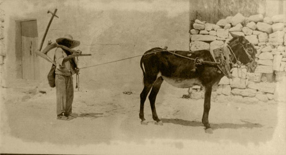 XOGĦOL IL-BIDWI:  F'SETTEMBRU tal-1849