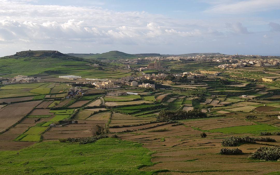Ix-Xtut taż-Żebbuġ, l-Għasri, u l-Għarb (IV)
