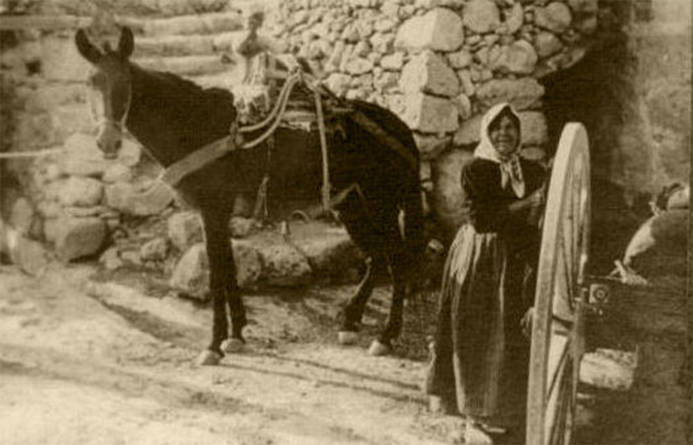 XOGĦOL IL-BIDWI:  F'NOVEMBRU tal-1850