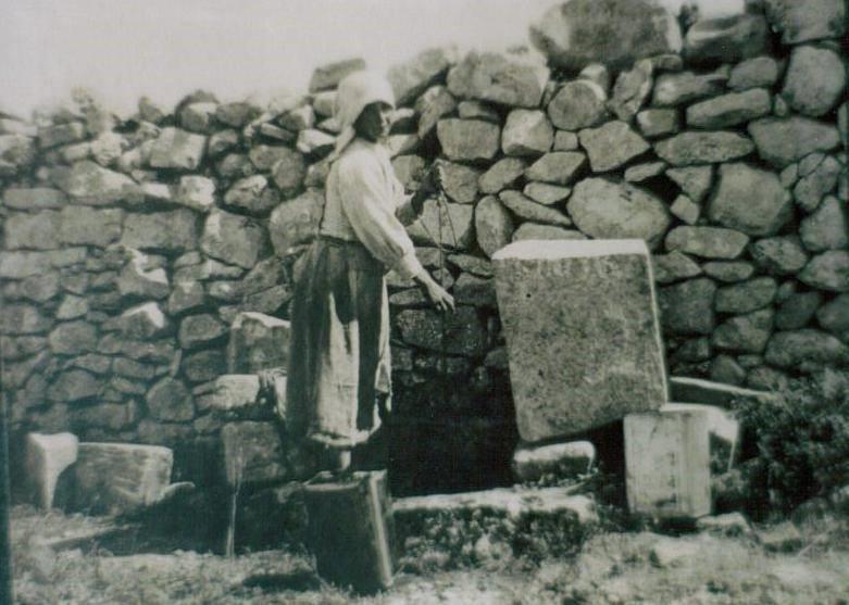 Is-Siġar ta' Malta